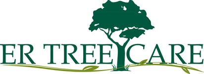 E R Tree Care LLC